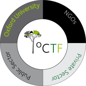 OCTF Structure